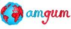 Логотип Amgum