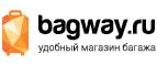 Логотип Bagway