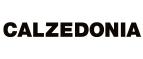 Логотип Calzedonia Ru