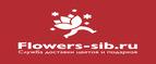 Логотип Flowers-sib