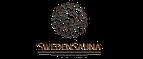 Логотип swedensauna.ru