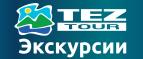 Логотип tezeks
