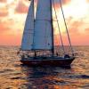 Яхты и катера для путешествий